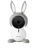 ABC1000_BT_Front_RABBIT_Gray_Transparent.png